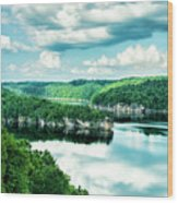 Summertime At Long Point Wood Print