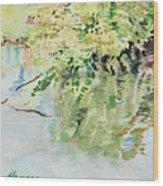 summertime V Wood Print by Lucinda  Hansen