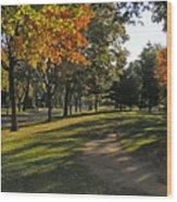 Summit Avenue In The Fall Wood Print
