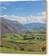 Summit View New Zealand II Wood Print
