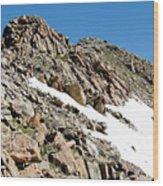 Summiting The Mount Massive Summit Wood Print