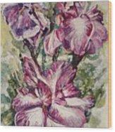 Sun And Iris Wood Print