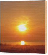 Sun And Sea Oats Wood Print