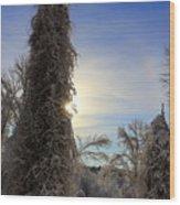 Sun And Snow  Wood Print