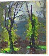 Sun Ater Rain Wood Print