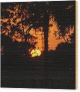 Sun Ball Wood Print