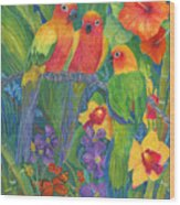 Sun Conure Parrots Wood Print