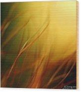 Sun Dance Wood Print