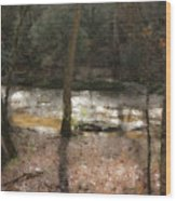Sun Dance On The River Wood Print