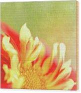 Sun Dancing Wood Print