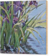 Sun Day - Iris In A Pond Wood Print