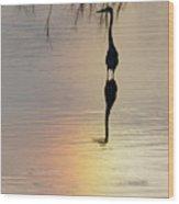 Sun Dog And Heron 1 Wood Print