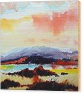 Sun Down Wood Print