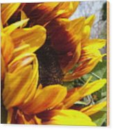 Sun Fire Flower Wood Print