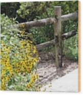 Sun Flower Fence Wood Print