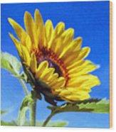 Sun Flower - Id 16235-142812-7136 Wood Print