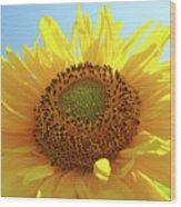Sun Flowers Art Sunflower Giclee Prints Baslee Troutman  Wood Print