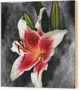 Sun Gazer Lily Poster Wood Print