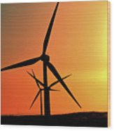 Sun Glare Upon Alberta Windfarm Wood Print