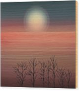 Sun Going To Bed Wood Print