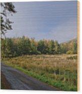 Sun In Glen. Wood Print