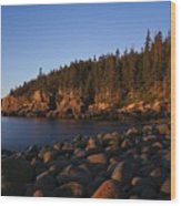 Sun Kissed Acadia Wood Print