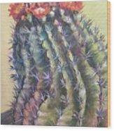 Sun Kissed Barrel Cactus Wood Print