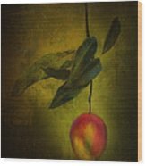 Sun-kissed Mango Wood Print