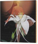 Sun Maiden Wood Print