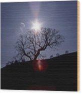 Sun On Tree Wood Print