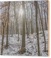 Sun Peaking Through The Trees - Fairmount Park Wood Print