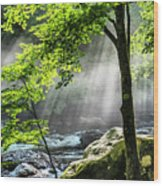 Sun Rays On Williams River  Wood Print