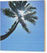 Sun Rays Through A Tall Palm Tree Wood Print