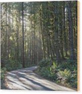 Sun Rays Through The Forest Wood Print