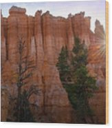 Sun Rising In Bryce Canyon Wood Print