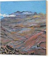 Sun Salutation At Haleakala Wood Print