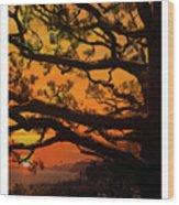 Sun Set At Rancho Palos Verdes, Cali Wood Print
