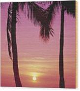 Sun Sets Between Pams Wood Print