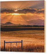 Sun Sets On Summer Wood Print