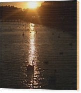 Sun Setting In Sheepshead Bay Wood Print