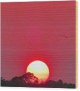 Sun Setting Wood Print