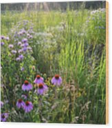 Sun Setting On Shelley Kelly Prairie Wood Print