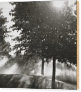 Sun Showers Wood Print