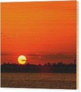 Sun Slice Wood Print