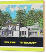 Sun Trap Section Wood Print