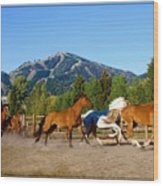 Sun Valley Stables Wood Print