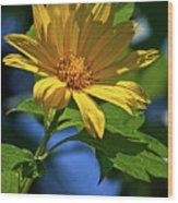 Sun Yellow Wood Print