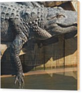 Sunbathing Gator Wood Print