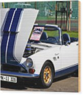 Sunbeam Tiger Wood Print