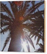 Sunbeams Through The Palms Wood Print